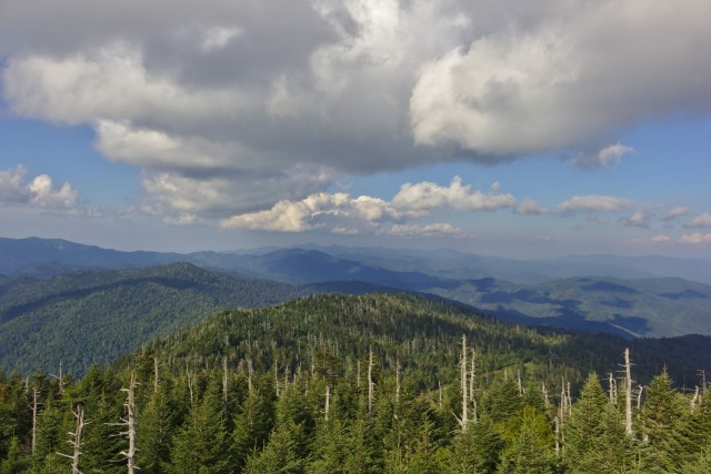 View from Clingmans Dome